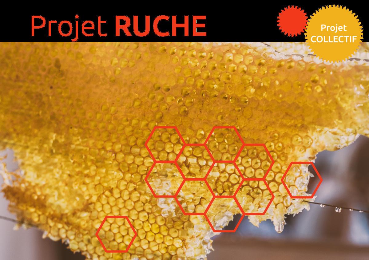 Projet Ruche